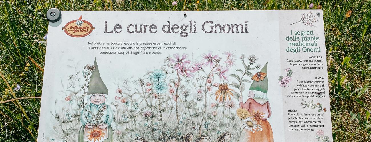 cartelli gnomi Asiago